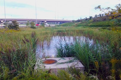 StormwaterManagementFacilityInspections